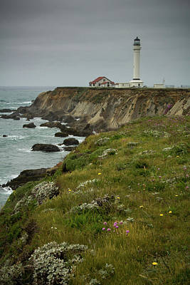 Photograph - Point Arena Lighthouse - Mendocino Coast by Eleanor Caputo