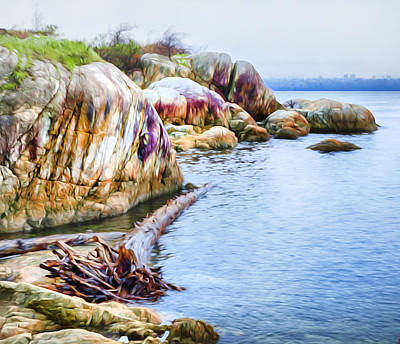 Photograph - Point Atkinson Beach by Theresa Tahara