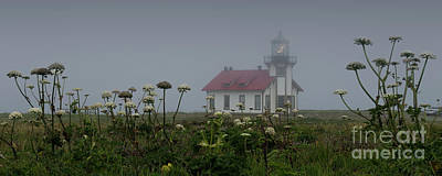 Photograph - Point Cabrillo Light Station With Seaside Angelica by Along The Trail