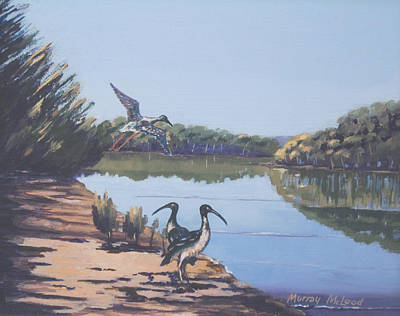 Print featuring the painting Point Clare Reflections 1 by Murray McLeod
