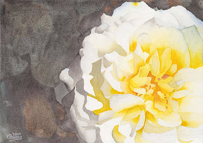 Nature Paint Painting - Point Defiance White Flower by Ken Powers
