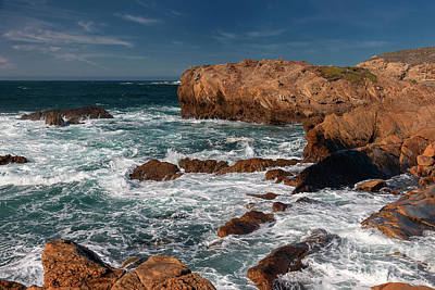 Photograph - Point Lobos 1 by Glenn Franco Simmons