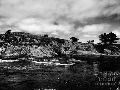 Point Lobos 4 Original