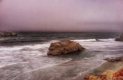 Photograph - Point Lobos California by Bill Owen