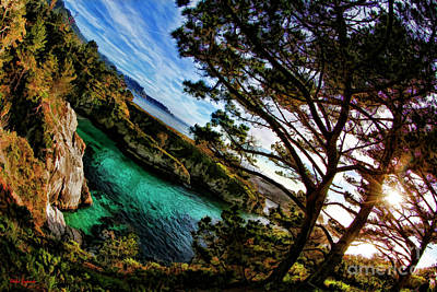 Photograph - Point Lobos California by Blake Richards