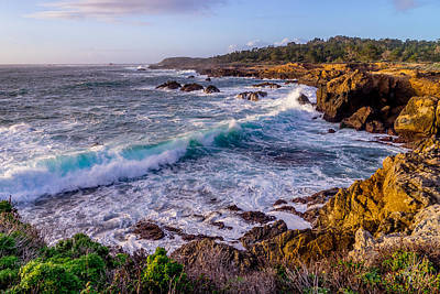 Photograph - Point Lobos by Derek Dean