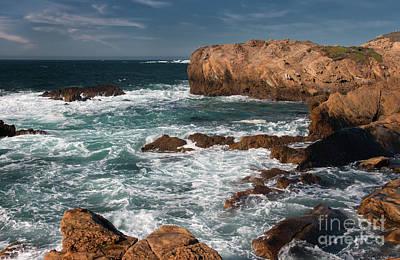 Point Lobos Art Print