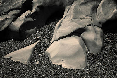 Photograph - Point Lobos I Toned by David Gordon
