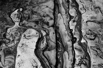 Photograph - Point Lobos II Bw by David Gordon