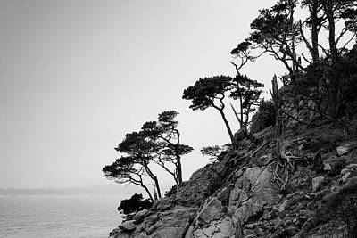 Photograph - Point Lobos IIi Bw by David Gordon