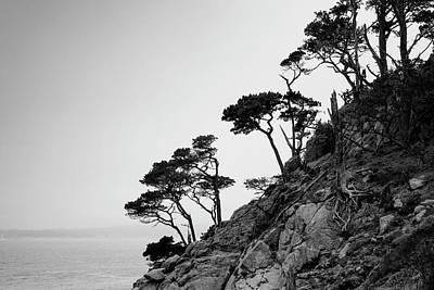 Photograph - Point Lobos IIi Bw by David Gordon