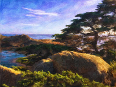 Photograph - Point Lobos by Jonathan Nguyen