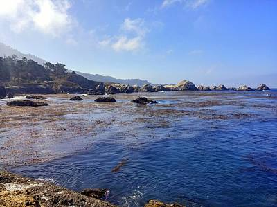 Photograph - Point Lobos Rocky Cove by Richard Yates