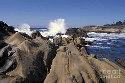 Photograph - Point Lobos Seascape 3 by Stan and Anne Foster