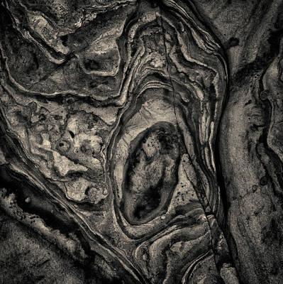 Art Print featuring the photograph Point Lobos Viii Sq Toned by David Gordon