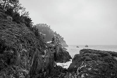 Photograph - Point Lobos Xi Bw by David Gordon