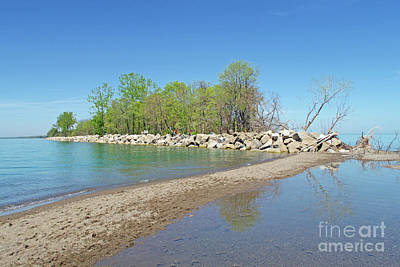 Photograph - Point Pelee Tip by Ann Horn