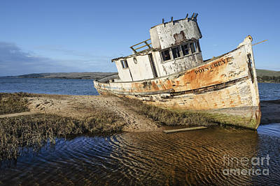 Photograph - Point Reyes Shipwreck by Amy Fearn
