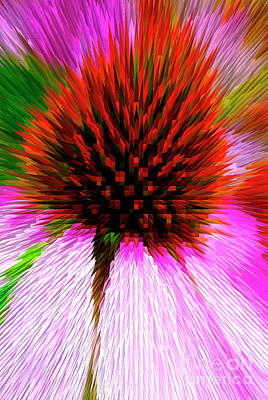 Photograph - Pointed Flower by Paul W Faust - Impressions of Light