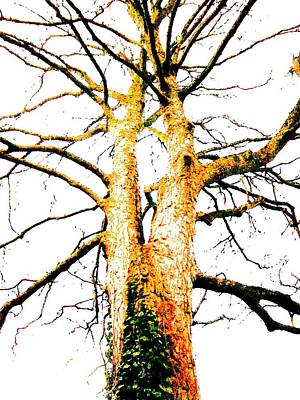 Mixed Media - Pointillised Tree by Julia Woodman