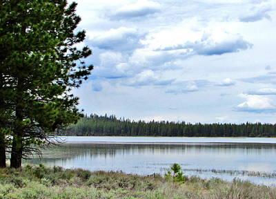 Photograph - Poison Lake by Marilyn Diaz