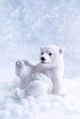 Polar Bear Figure Print by Amanda Elwell