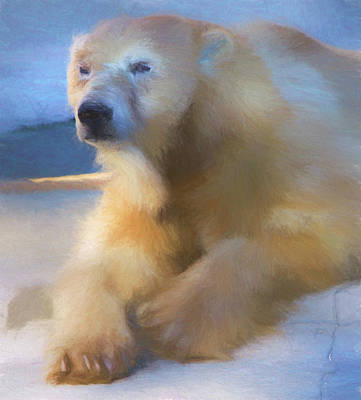 Digital Art - Polar Bear In Chalk by Kandy Hurley
