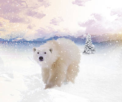 Polar  Bear Original by Lee Went