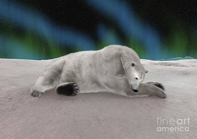 Digital Art - Polar Bear Resting by Design Windmill