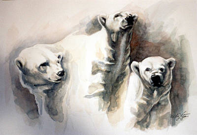 Polar Bear Study Art Print