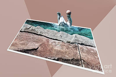 Photograph - Polar Slam Dunk by Deborah Klubertanz