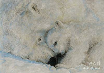 Drawing - Polar Snuggle by Meagan  Visser