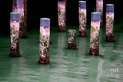 Photograph - Poles In The Water by Danuta Bennett
