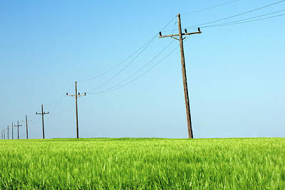 Photograph - Poles On Green by Todd Klassy