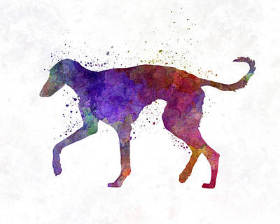 Polish Greyhound In Watercolor Art Print by Pablo Romero
