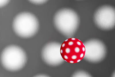 Photograph - Polka Dots by Alapati Gallery