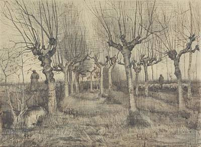 Painting - Pollard Birches Nuenen  March 1884 Vincent Van Gogh 1853  1890 by Artistic Panda
