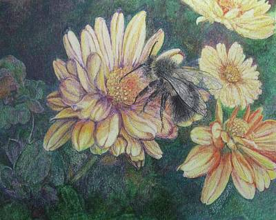 Daisy Drawing - Pollination by Lorraine McFarland