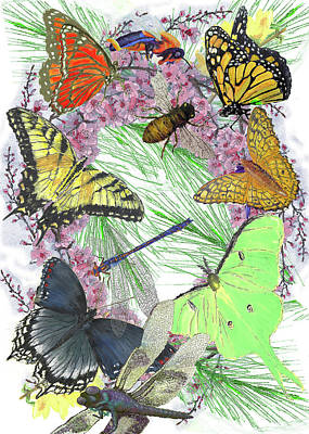 Pollinator Profusion Art Print by Forrest C Greenslade PhD