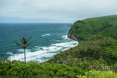 Photograph - Pololu Valley Shore by Jason Kolenda