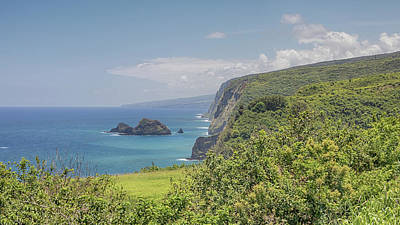 Photograph - Pololu Valley by Susan Rissi Tregoning
