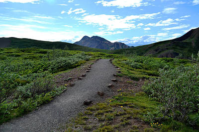 Polychrome Pass Trail, Denali Art Print by Zawhaus Photography