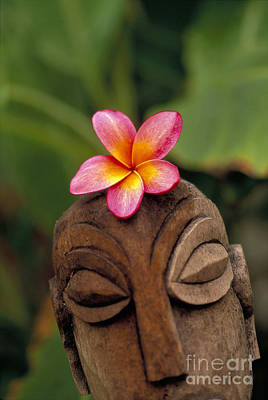 Photograph - Polynesian Statue by Dana Edmunds - Printscapes