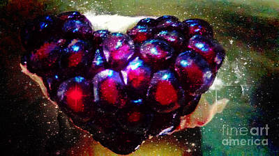 Painting - Pomegranate Heart In Space by Genevieve Esson