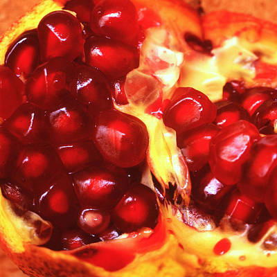 Photograph - Pomegranate by Paul Cowan