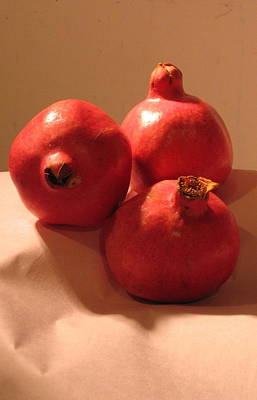 Photograph - Pomegranates by Outre Art  Natalie Eisen