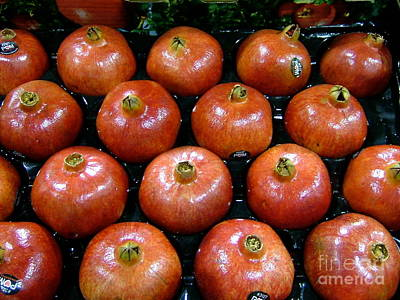 Photograph - Pomegranates by Terri Thompson