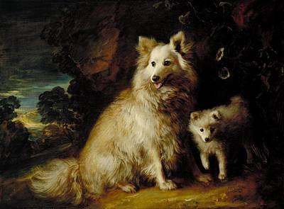 Pomeranian Bitch And Puppy Art Print