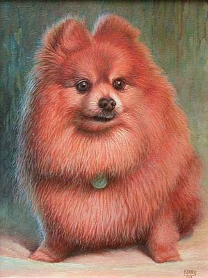 Painting - Pomeranian Dog by Hans Droog