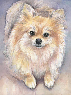 Puppies Painting - Pomeranian Watercolor by Olga Shvartsur